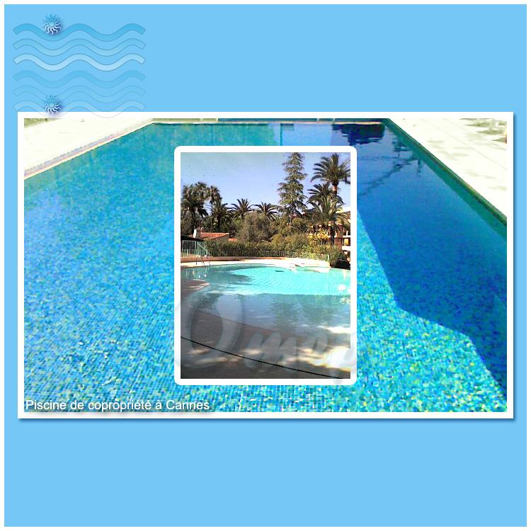 Entretien piscines com maintenance de piscines sur la for Maintenance piscine