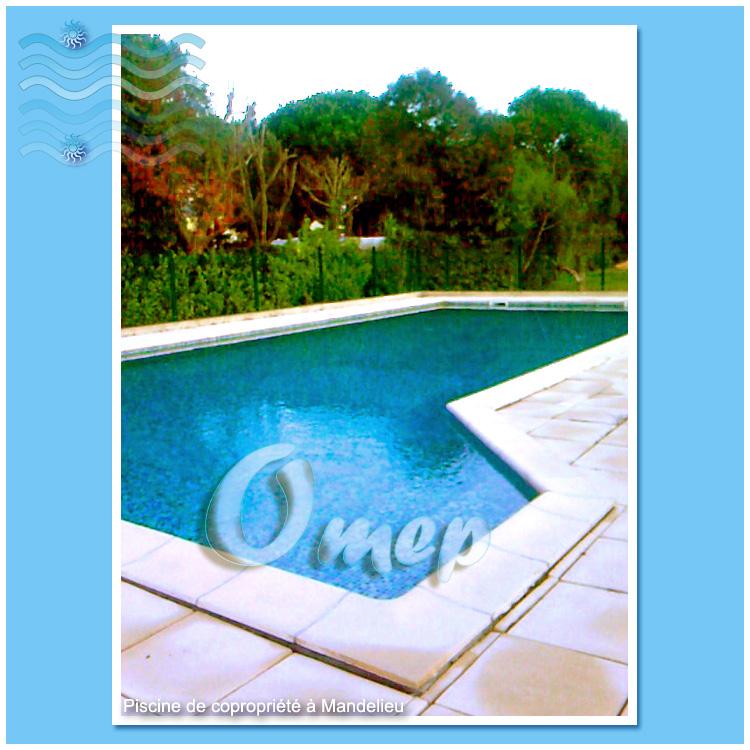 Entretien piscines com maintenance de piscines sur la for Piscine mandelieu